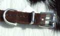 Hand-Made English  Brushed Leather Flat Dog Collar